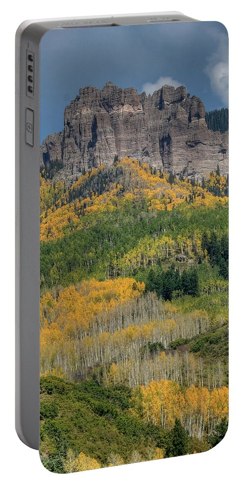 Aspens Portable Battery Charger featuring the photograph Aspens by Linda Weyers