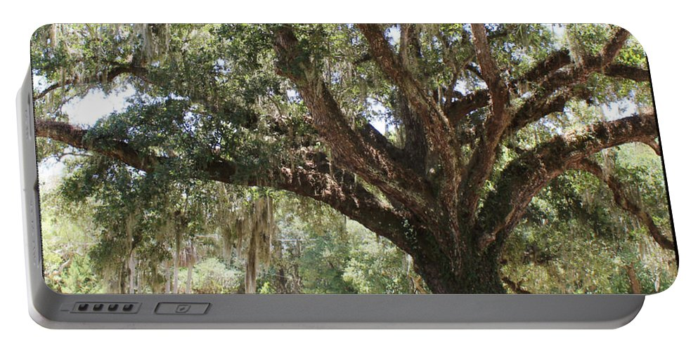 Shannon Portable Battery Charger featuring the photograph Astride Mighty Oak by Shannon Sears