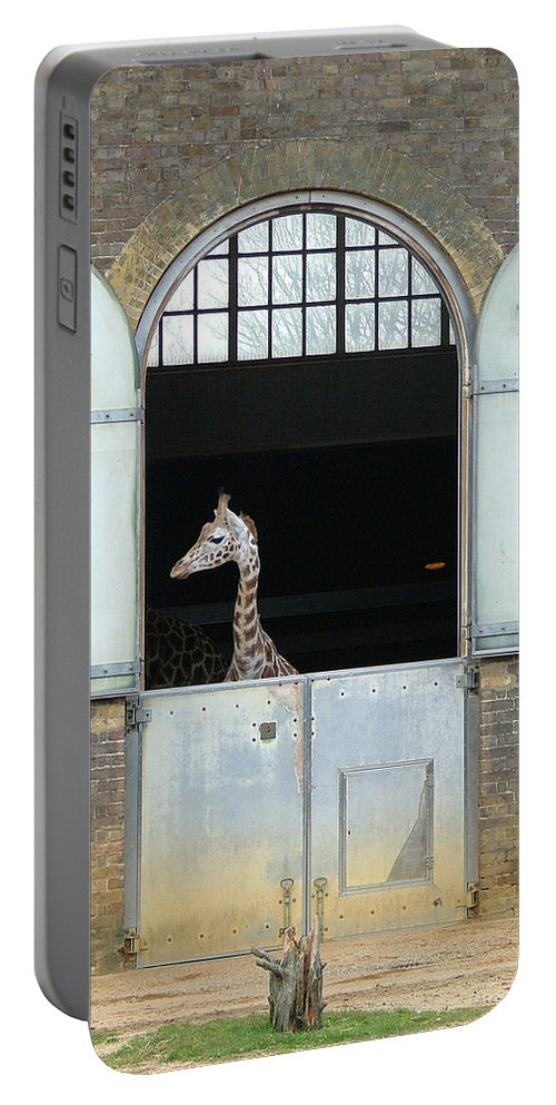 Giraffe Portable Battery Charger featuring the photograph Asymmetrical Giraffe by Heather Lennox