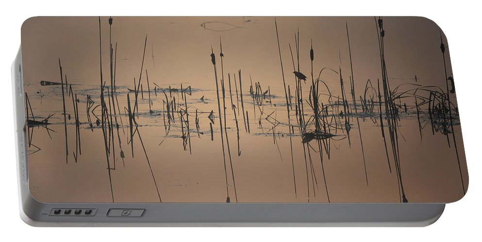 Pond Portable Battery Charger featuring the photograph At The Pond by Whispering Peaks Photography