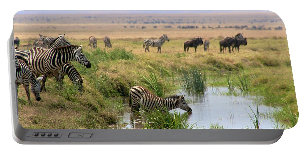 Portable Battery Charger featuring the photograph At The Watering Hole by Bruce Block