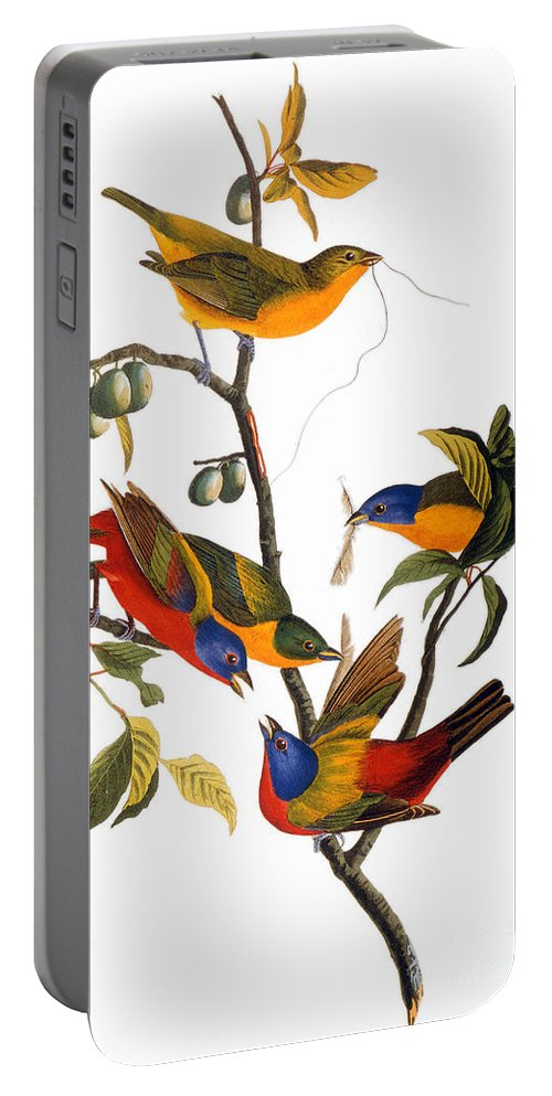 1827 Portable Battery Charger featuring the drawing Bunting, 1827 by John James Audubon