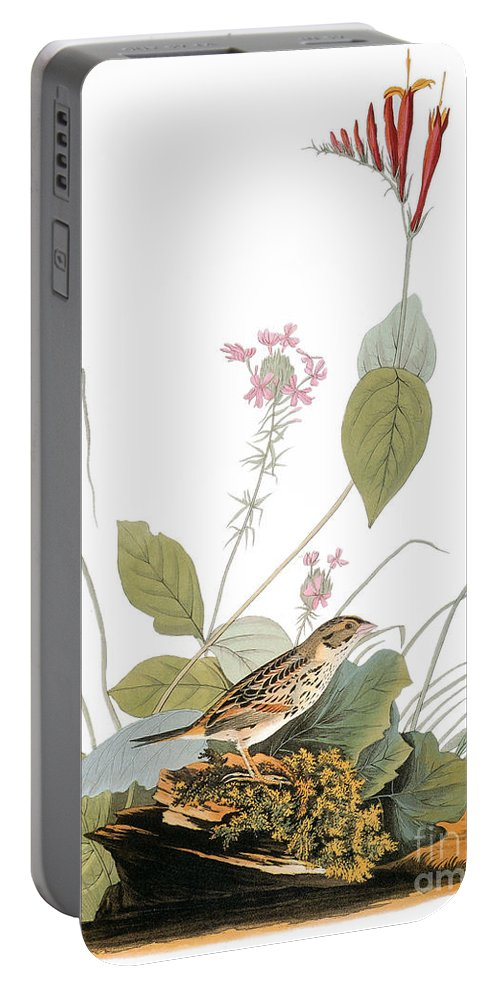 1838 Portable Battery Charger featuring the photograph Audubon: Bunting by Granger