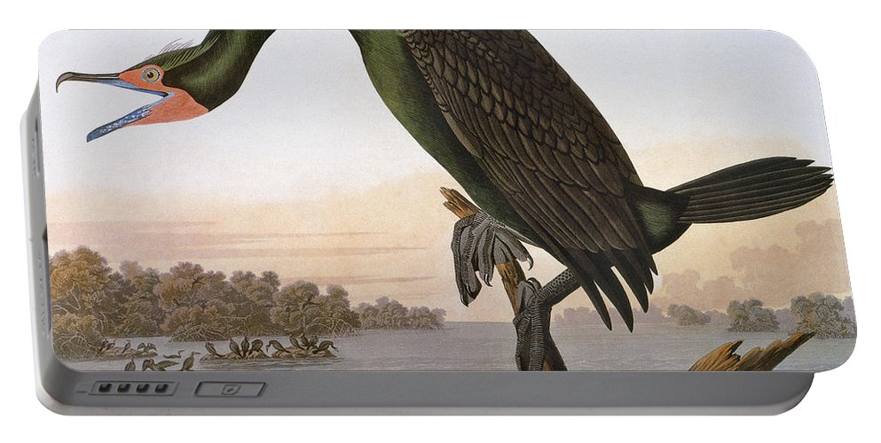 1838 Portable Battery Charger featuring the photograph Audubon: Cormorant by Granger