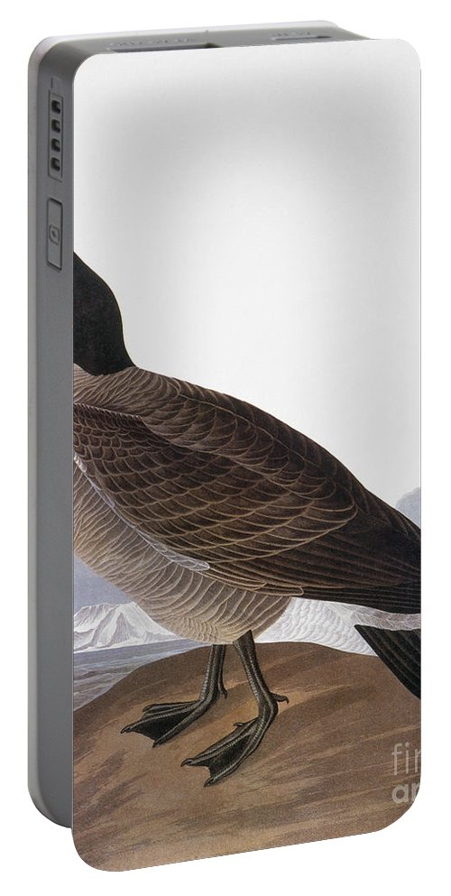 1827 Portable Battery Charger featuring the photograph Audubon: Goose, 1827 by Granger