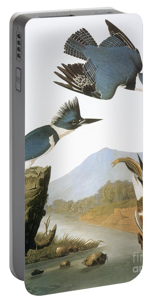 1827 Portable Battery Charger featuring the photograph Audubon Kingfisher by Granger