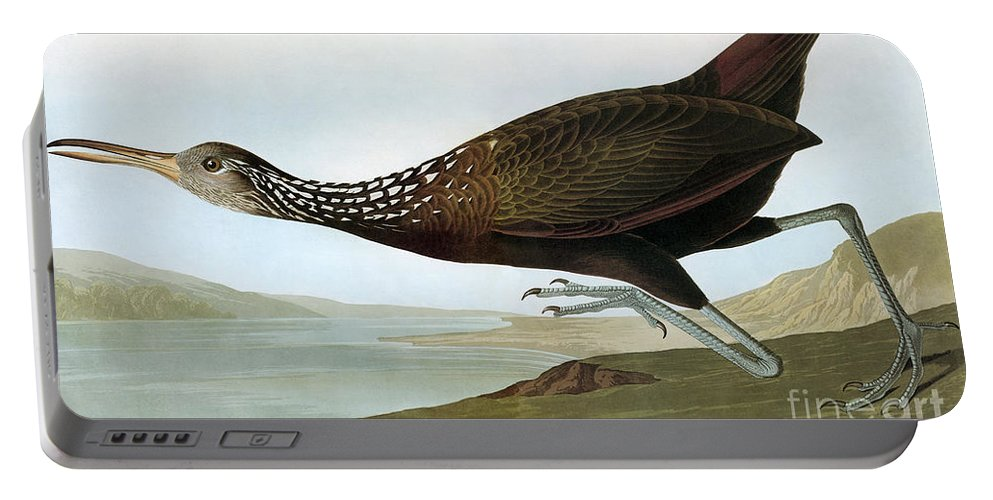 19th Century Portable Battery Charger featuring the photograph Audubon: Limpkin by Granger