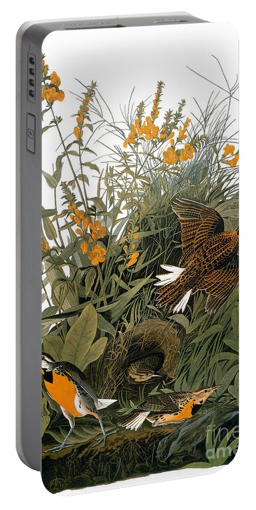 1838 Portable Battery Charger featuring the photograph Audubon: Meadowlark by Granger