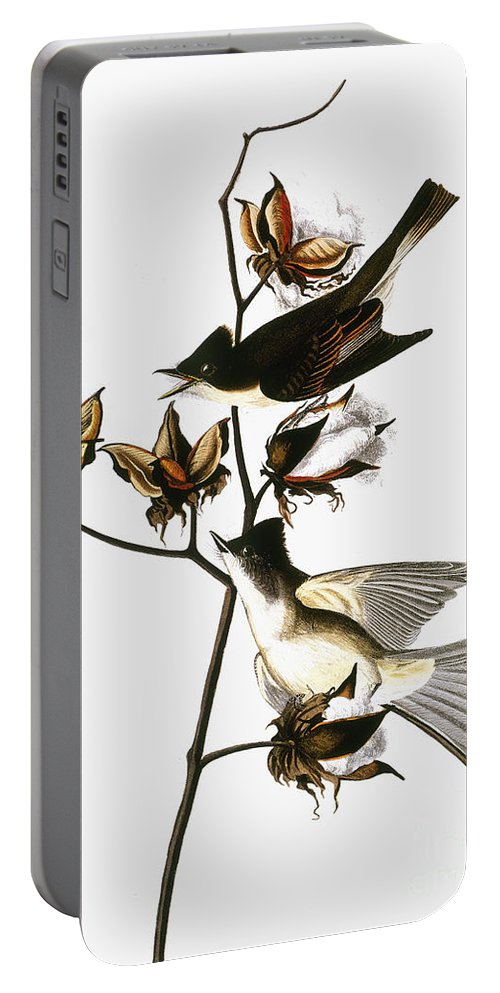 1838 Portable Battery Charger featuring the photograph Audubon: Phoebe by Granger