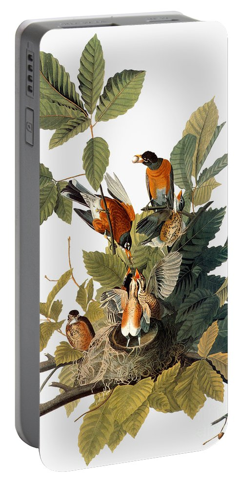 1838 Portable Battery Charger featuring the photograph Audubon: Robin by Granger