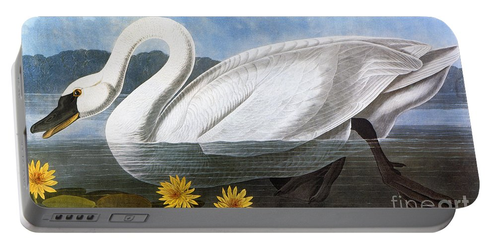 1827 Portable Battery Charger featuring the photograph Audubon: Swan, 1827 by Granger
