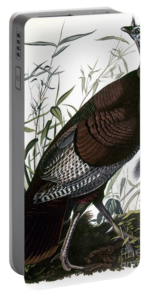1838 Portable Battery Charger featuring the photograph Audubon: Turkey by Granger