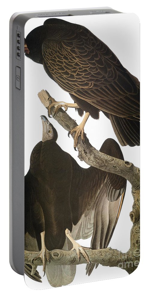 1827 Portable Battery Charger featuring the photograph Audubon: Turkey Vulture by Granger