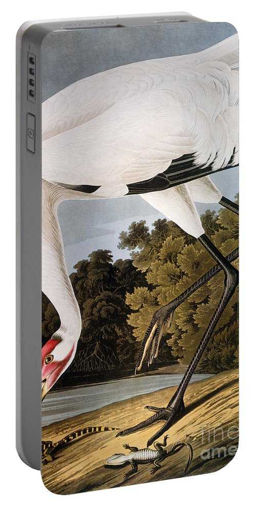 1827 Portable Battery Charger featuring the photograph Audubon: Whooping Crane by Granger