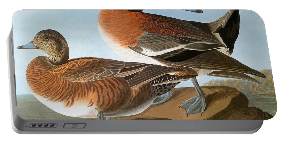 1827 Portable Battery Charger featuring the photograph Audubon: Wigeon, 1827-38 by Granger