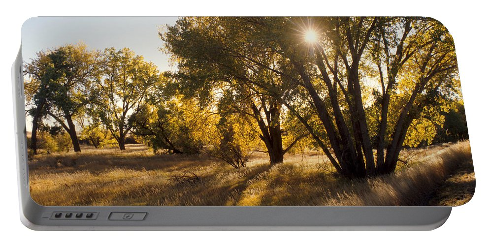 Fall Portable Battery Charger featuring the photograph Autum Sunburst by Jerry McElroy