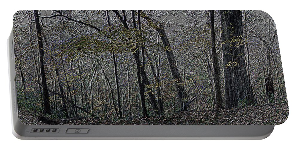 Woods Portable Battery Charger featuring the photograph Autumn 2015 Panorama In The Woods Pa 01 by Thomas Woolworth