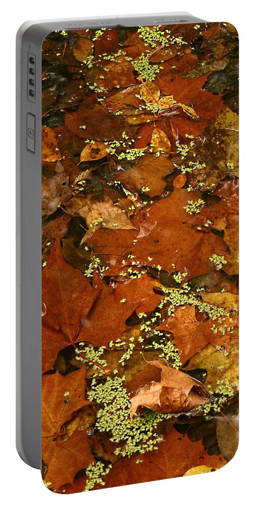 Autumn Fall Leaves Leaf Orange Green Water Maple Photograph Photography Portable Battery Charger featuring the photograph Autumn Abstract by Shari Jardina