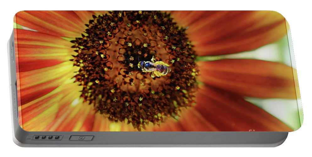 Sunflower Portable Battery Charger featuring the photograph Autumn Beauty Sunflower by Sari Sauls