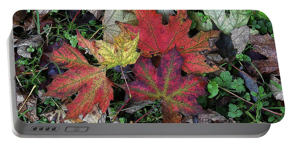 Diane Berry Portable Battery Charger featuring the drawing Autumn Colors by Diane E Berry