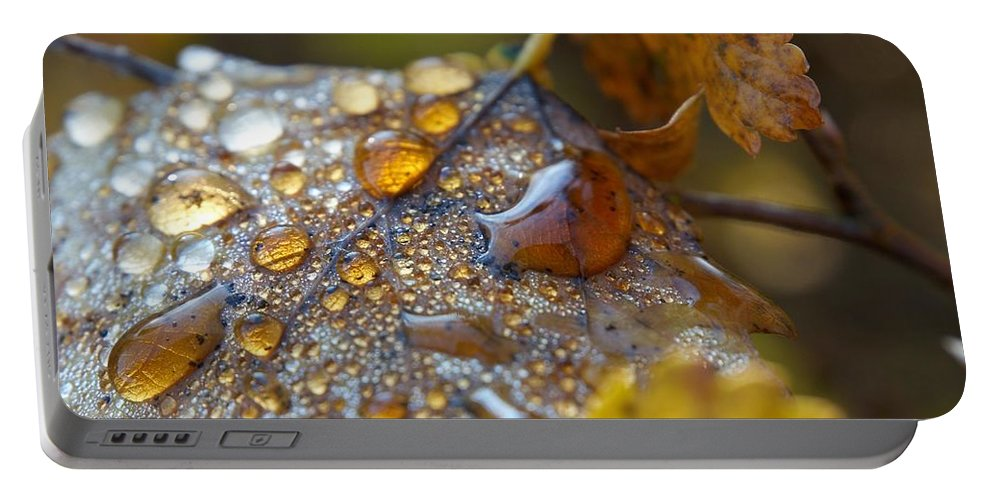 Lehtokukka Portable Battery Charger featuring the photograph Autumn Colors by Jouko Lehto