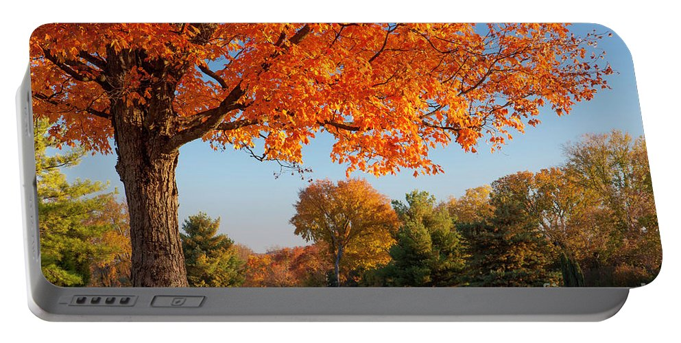 Autumn Portable Battery Charger featuring the photograph Autumn Dawn by Brian Jannsen