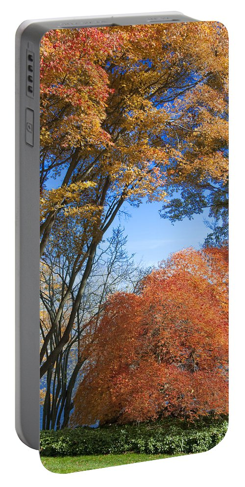 Autumn Portable Battery Charger featuring the photograph Autumn Day by Steven Natanson