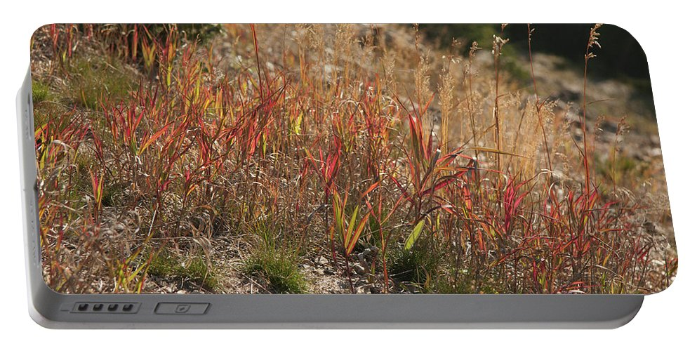 Foliage Portable Battery Charger featuring the photograph Autumn by Deanna Paull