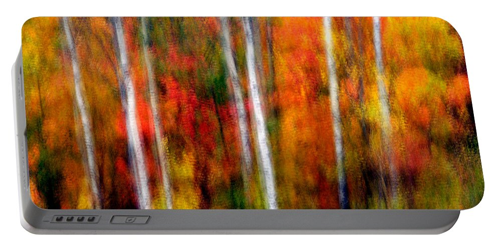 Canada Portable Battery Charger featuring the photograph Autumn Dreams by Doug Gibbons