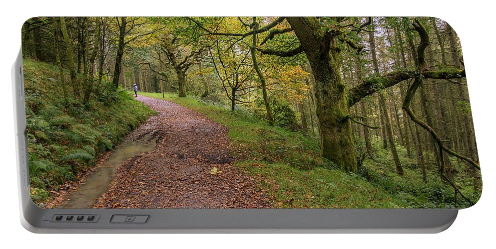 Fall Portable Battery Charger featuring the photograph Autumn Forest Path - by Chris Smith
