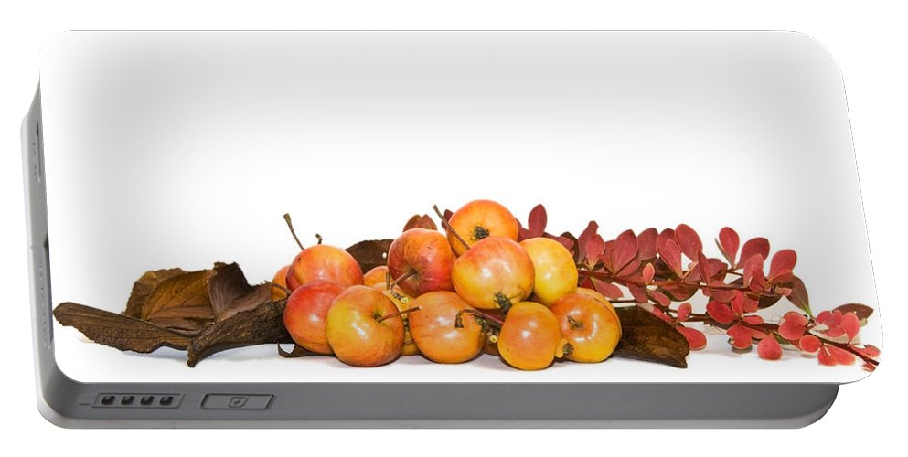 Autumn Portable Battery Charger featuring the photograph Autumn Friuts And Leaves by Svetlana Sewell
