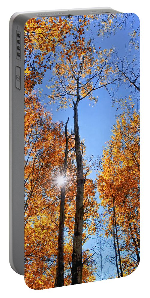 Autumn Leaves Portable Battery Charger featuring the photograph Autumn Gold Sunburst by Christina Rollo