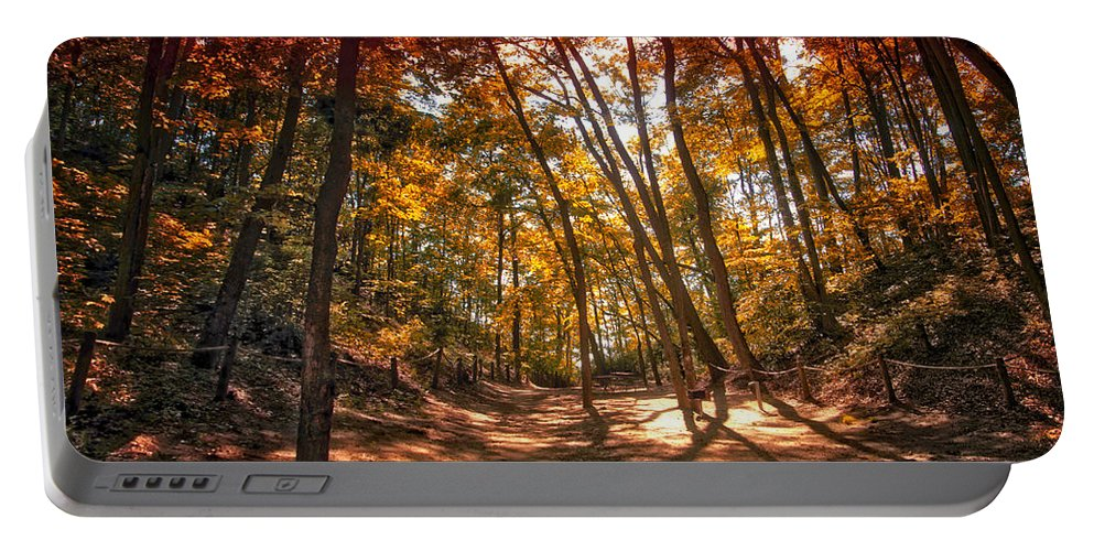 Autumn Portable Battery Charger featuring the photograph Autumn In The Dunes by Thomas Woolworth