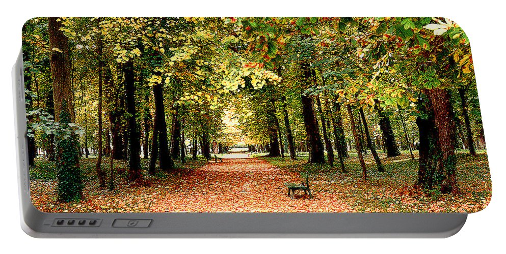 Autumn Portable Battery Charger featuring the photograph Autumn In The Park by Nancy Mueller