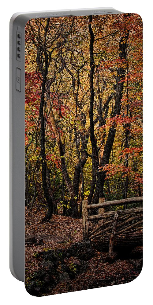 Central Park Portable Battery Charger featuring the photograph Autumn In The Rambles by Chris Lord