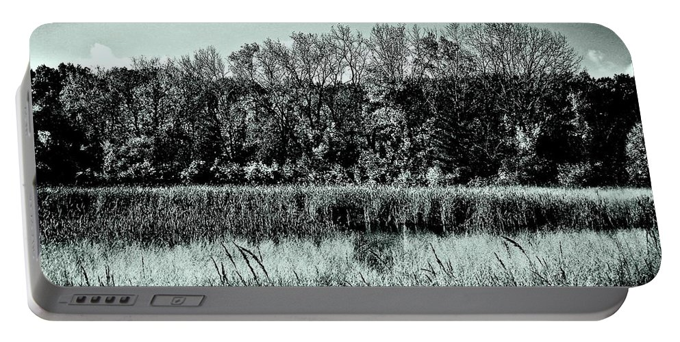 Photography Portable Battery Charger featuring the photograph Autumn In The Wetlands - Black And White by Frank J Casella