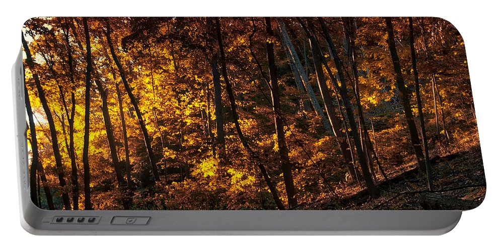 Autumn Portable Battery Charger featuring the photograph Autumn In The Woods by Thomas Woolworth