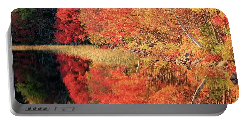 Autumn Portable Battery Charger featuring the photograph Autumn Lake Scenery by Gary Corbett