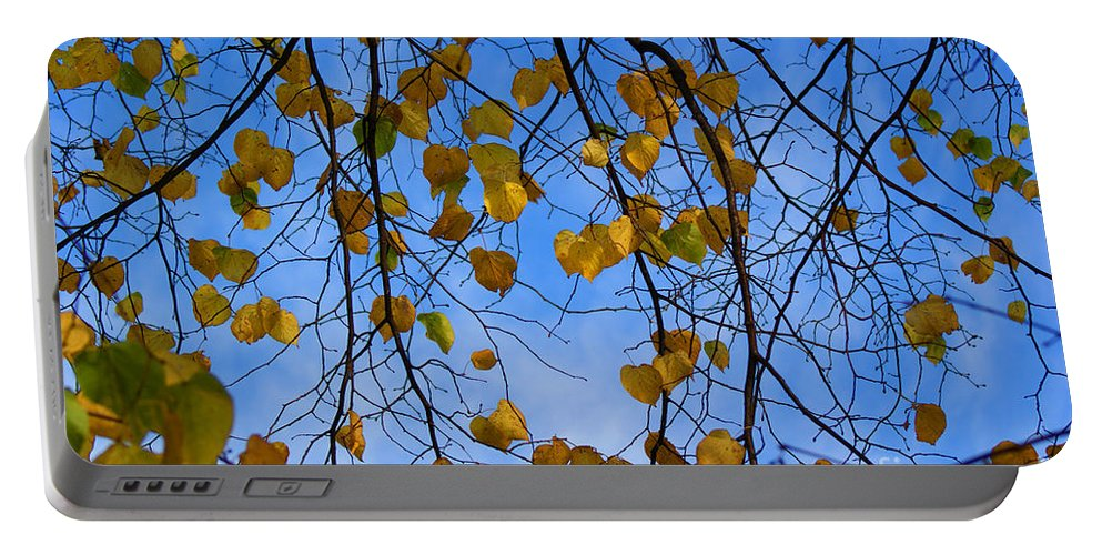 Autumn Portable Battery Charger featuring the photograph Autumn Leaves by Carol Lynch