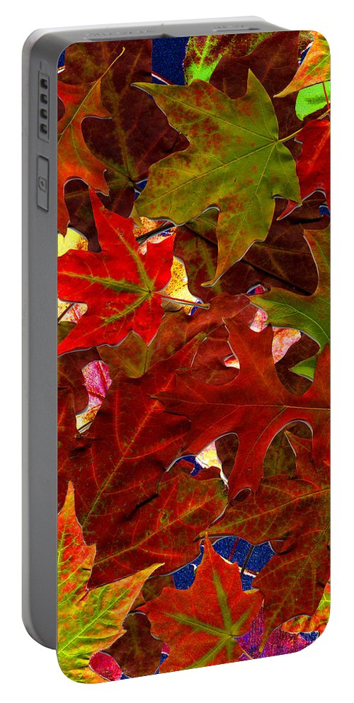 Collage Portable Battery Charger featuring the photograph Autumn Leaves by Nancy Mueller