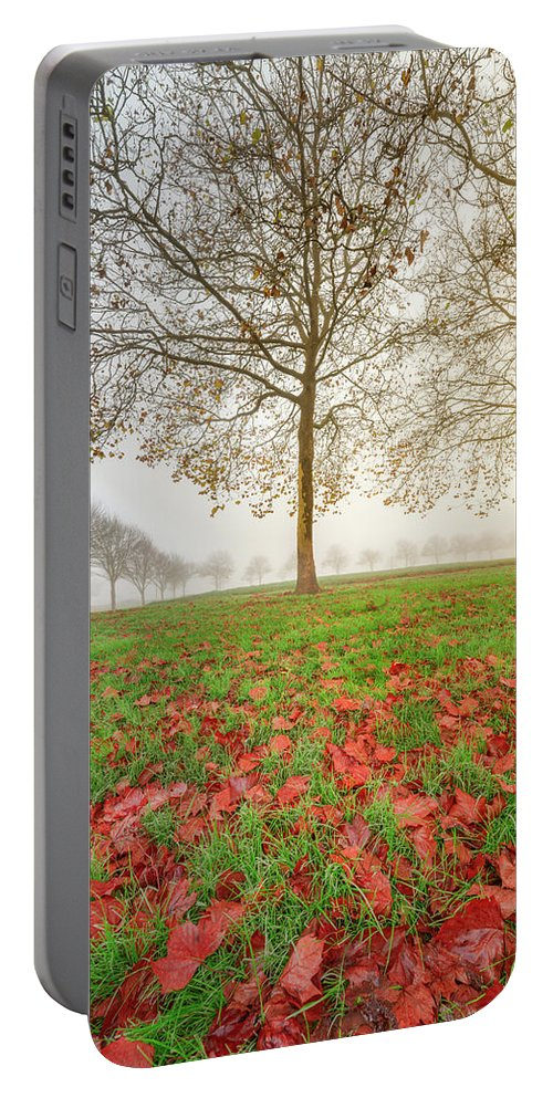 America Portable Battery Charger featuring the photograph Autumn Leaves Near To Far Super High Resolution by William Freebilly photography