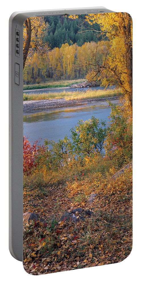 Appealing Portable Battery Charger featuring the photograph Autumn by Leland D Howard