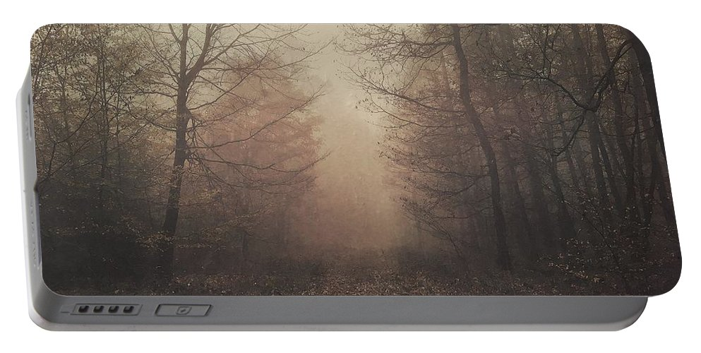 Photography Portable Battery Charger featuring the photograph Autumn Mists by Claudia Cee