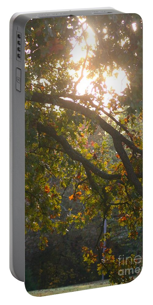 Autumn Portable Battery Charger featuring the photograph Autumn Morning Glow by Nadine Rippelmeyer