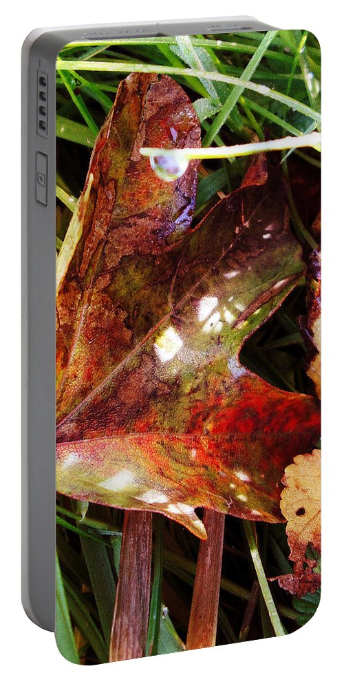 Portable Battery Charger featuring the photograph Autumn Palette by Susan Baker