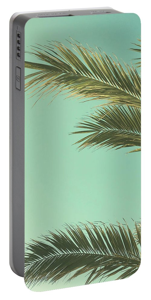 Palm Trees Portable Battery Charger featuring the photograph Autumn Palms II by Cassia Beck