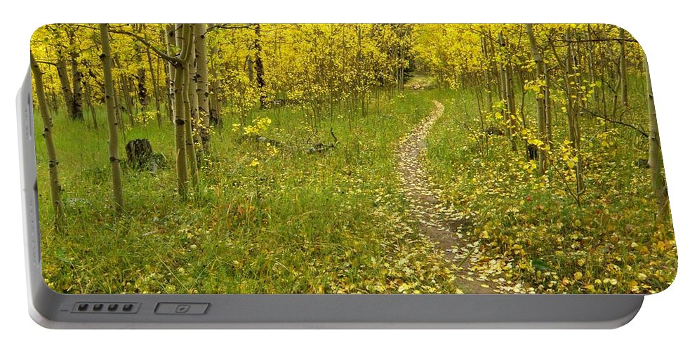 Colorado Rockymountains Autumn Golden Leaves Path Hike Walk Aspen Portable Battery Charger featuring the photograph Autumn Path by George Tuffy