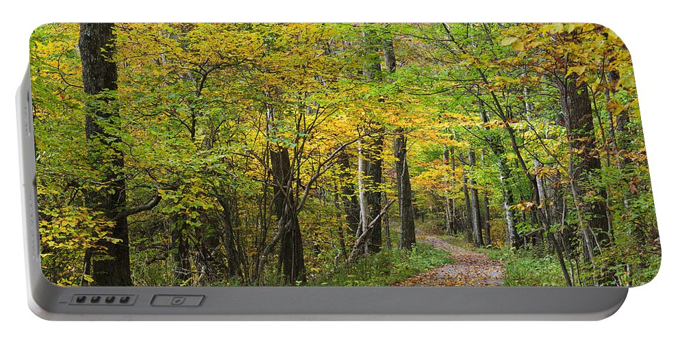 North Portable Battery Charger featuring the photograph Autumn Path by Jill Lang
