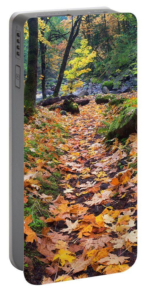 Path Portable Battery Charger featuring the photograph Autumn Path by Mike Dawson