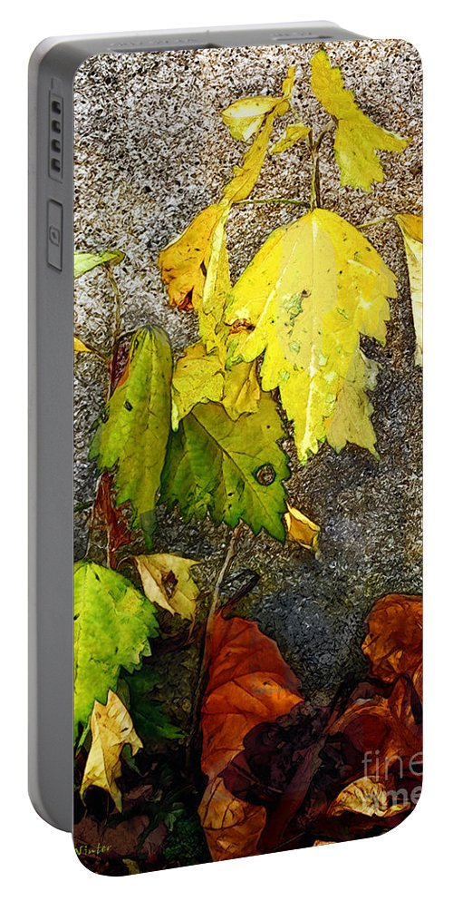 Autumn Portable Battery Charger featuring the painting Autumn Rainbow by RC DeWinter